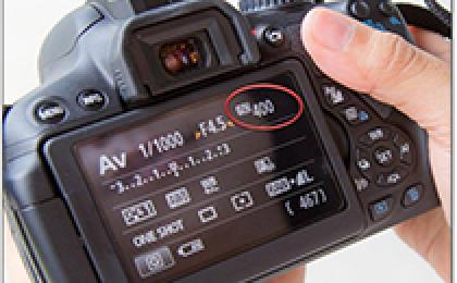 新手摄影入门-初级摄影训练实用教程