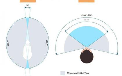 格力AR新专利,让女性走夜路更安全?